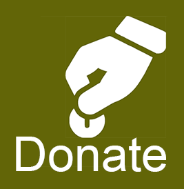 Donate to GWT